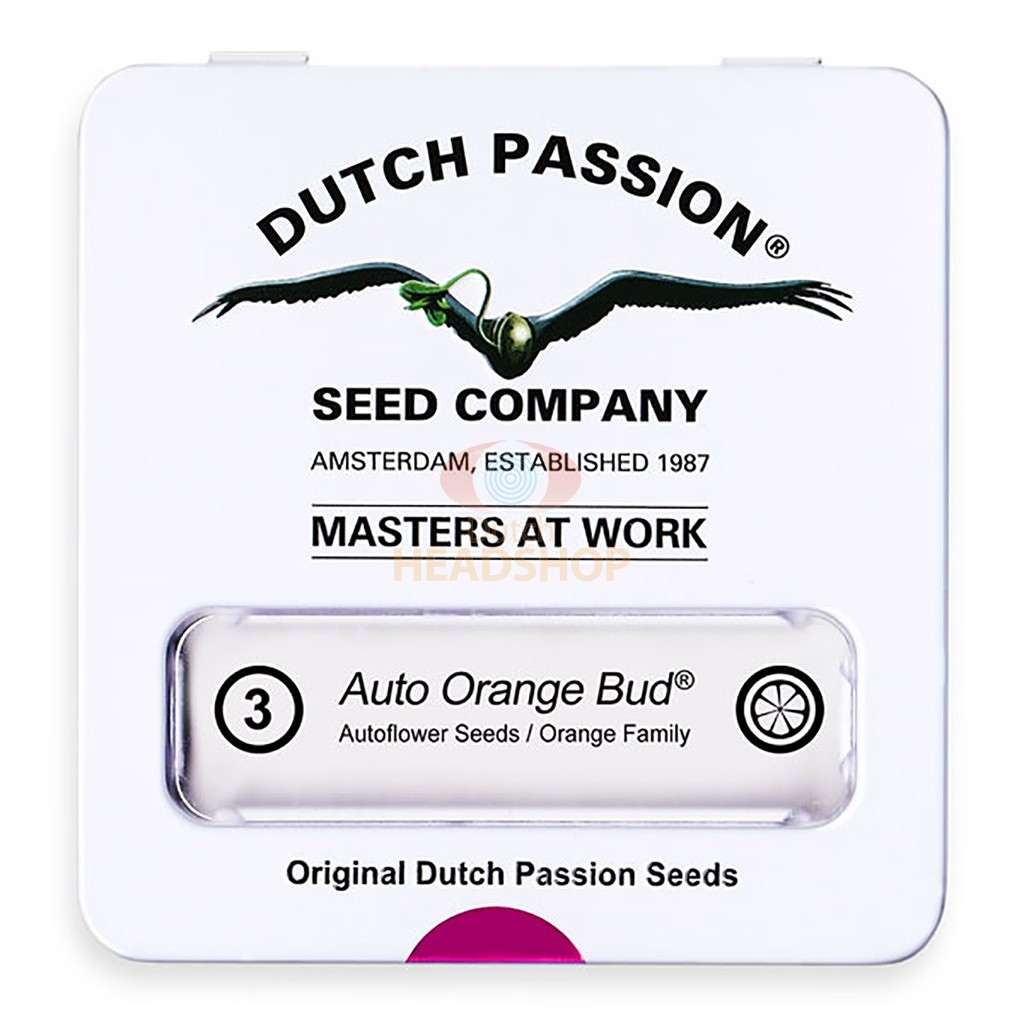 Auto Orange Bud (Dutch Passion) 3 seeds