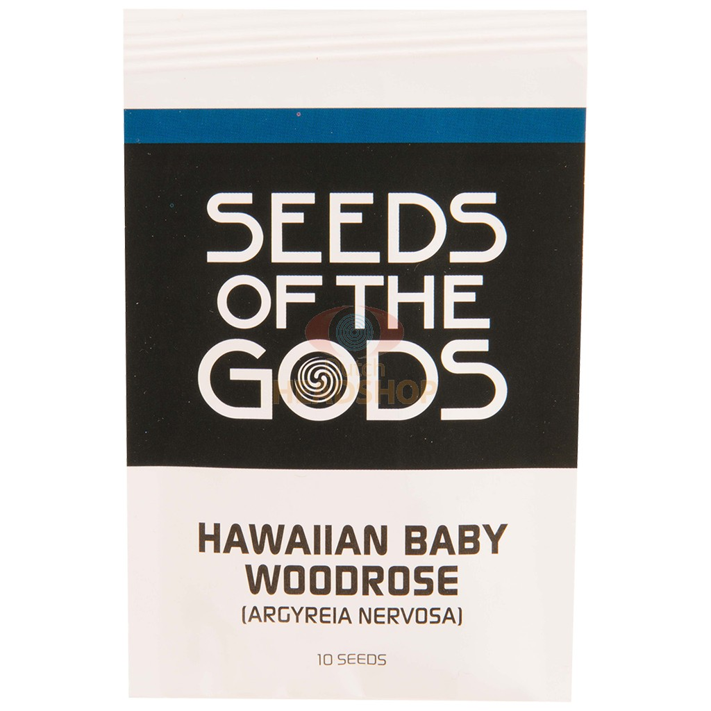 Hawaiian baby woodrose seeds [Argyreia Nervosa] (Seeds of the Gods) 10 seeds
