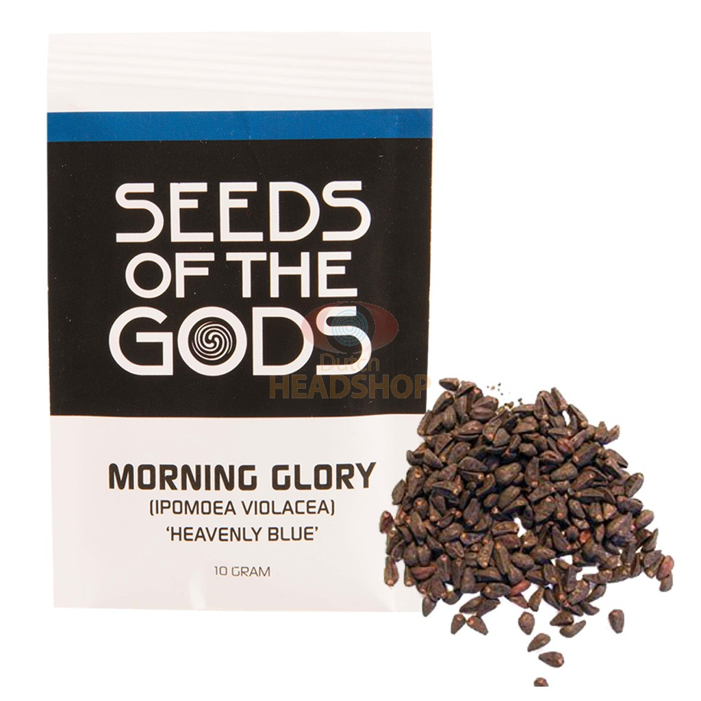 Morning Glory Seeds 10 Grams Heavenly Blue