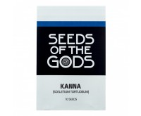 Kanna Seeds [Sceletium tortuosum] (Seeds of the Gods) 10 pieces