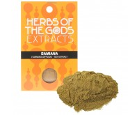 Damiana extract 10X (5 grams) (Turnera Diffusa)