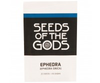 Efedra [Ephedra sinica] (Seeds of the Gods) 20 seeds