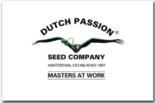 Dutch Passion Seeds logo Dutch Headshop