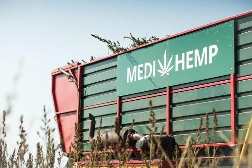 Medihemp CBD Producer Dutch Headshop
